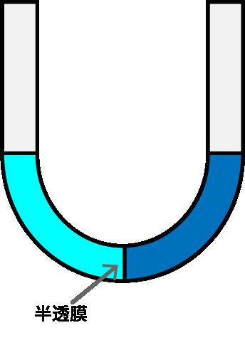 U字のビーカーに半透膜を介して水と食塩水が入っている図