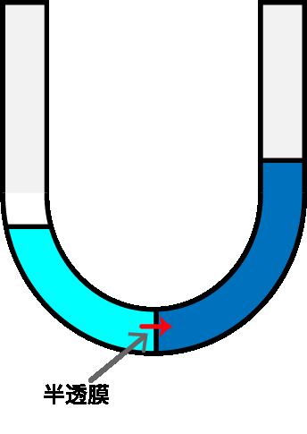 浸透圧の図
